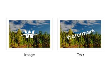 MaxGalleria Watermark