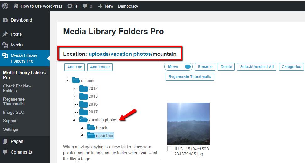 example of folders synced via ftp