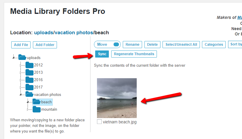 Sync FTP Server Folders With WordPress Media Library