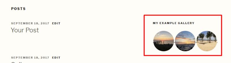 example of a gallery widget