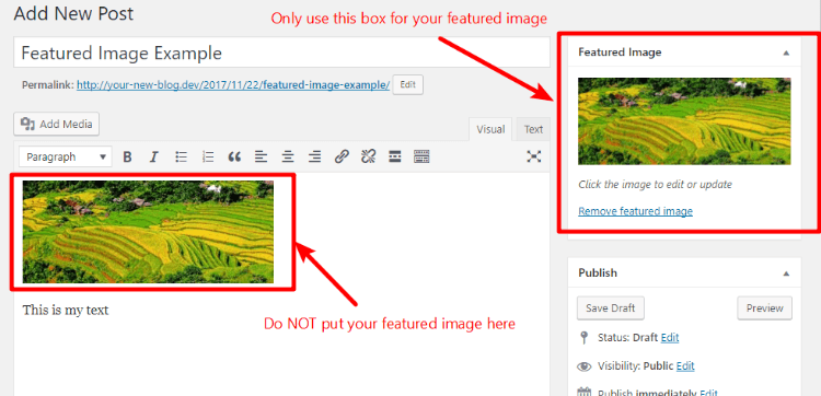 wordpress featured image appearing twice